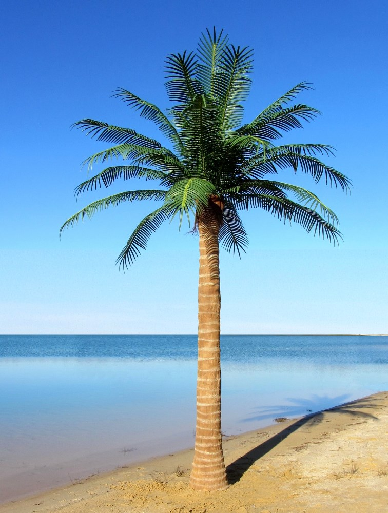 custom made palm trees artifical exterior palms