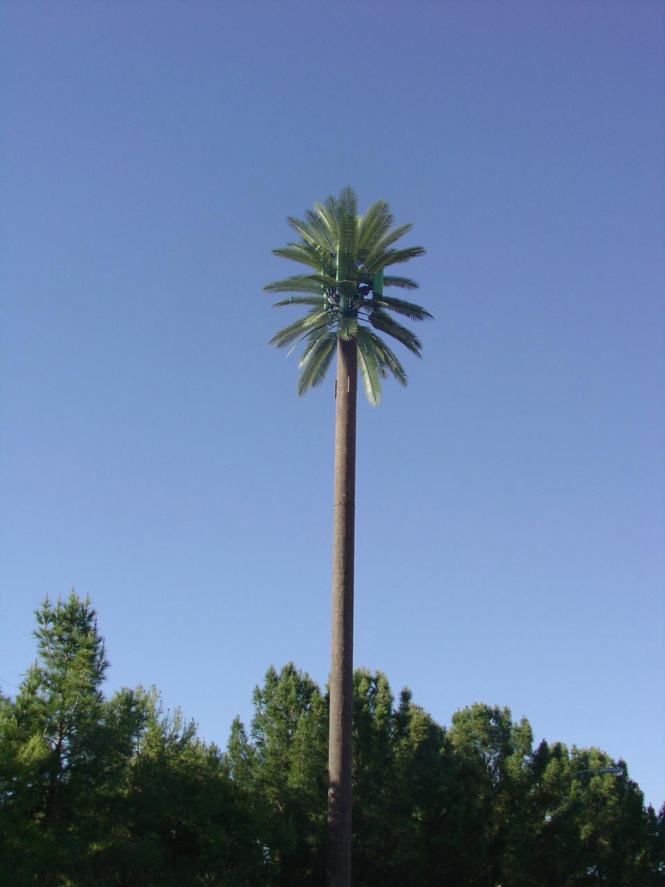 Artificial Palm Trees, Tiki Huts - Custom Made Palm Trees