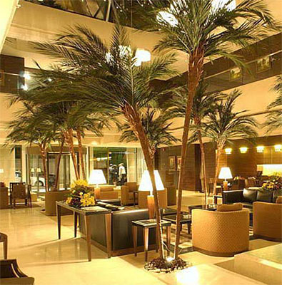 Custom Made Palm Trees - Preserved Interior Palms