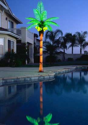 Custom Made Palm Trees The Lighted Tree And Fireworks Light Gallery