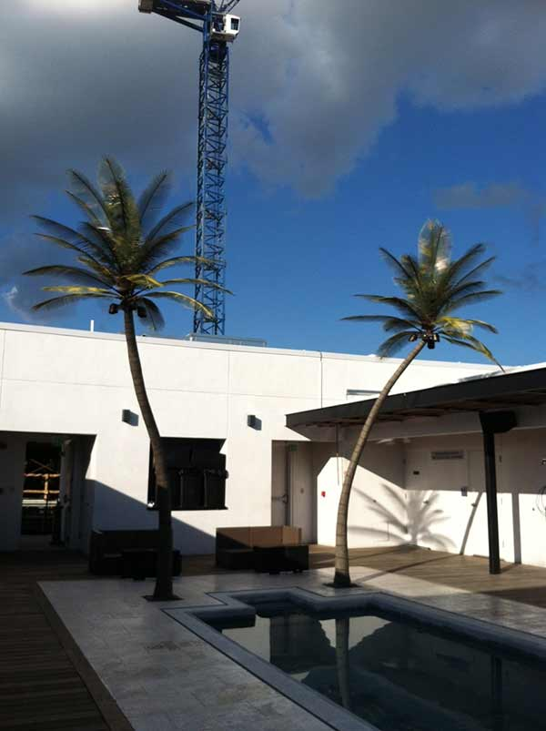 image of exterior artificial palm trees