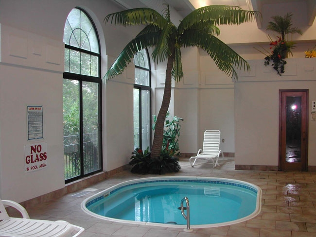 pool area with palms
