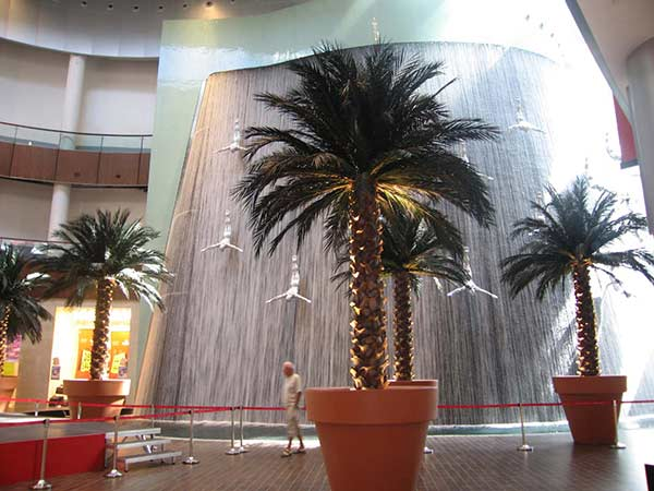 image of  palm tree inside planter inside a building
