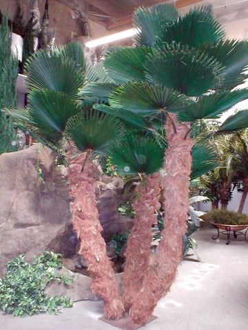 image of a interior artificialcuban palm tree