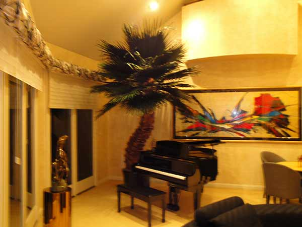 image of an artificial Palm tree inside by a piano
