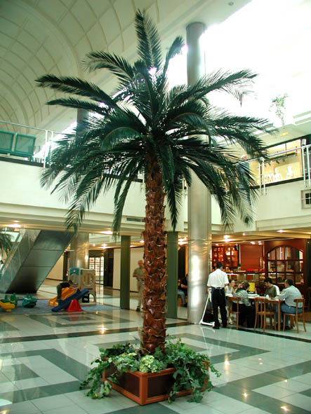 image of a fabricated palm trees inside a building