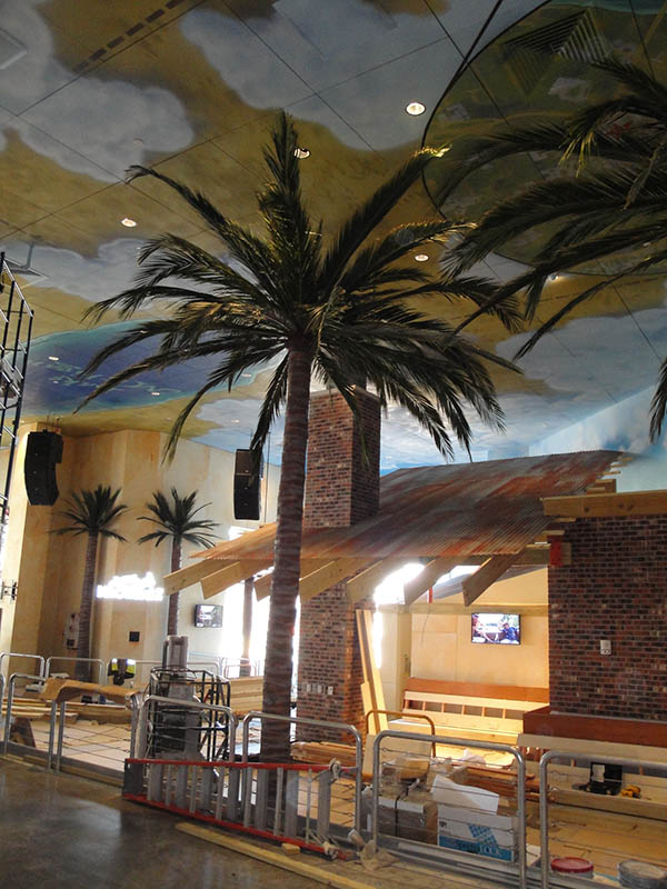 image of tall palm tree inside a building