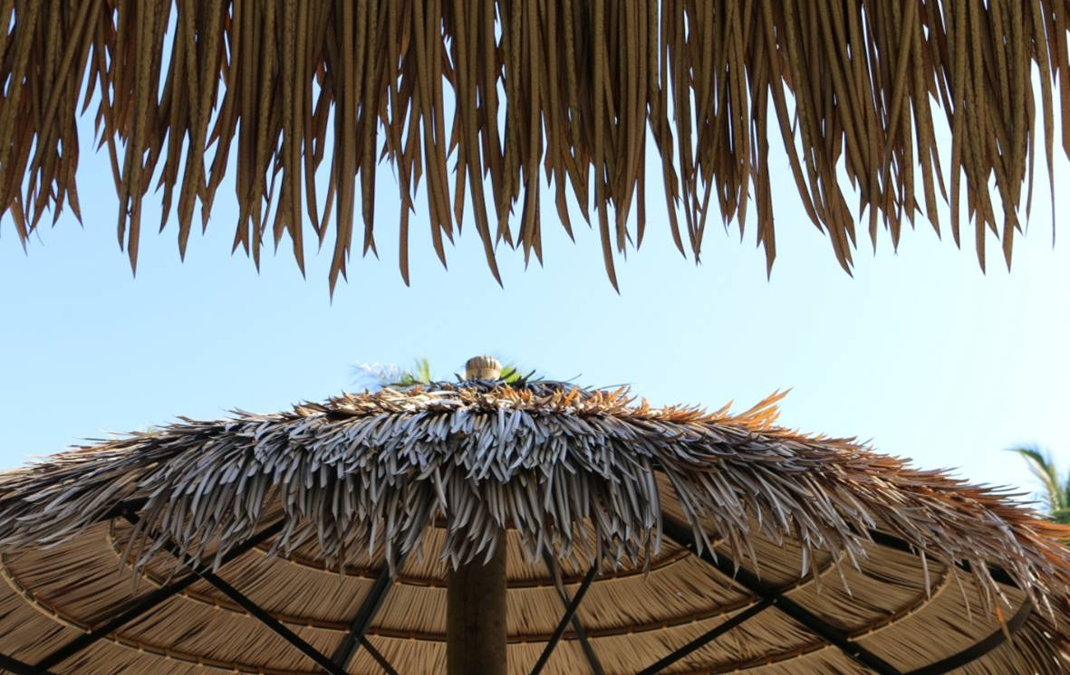 Custom Made Palm Trees Thatched Umbrellas